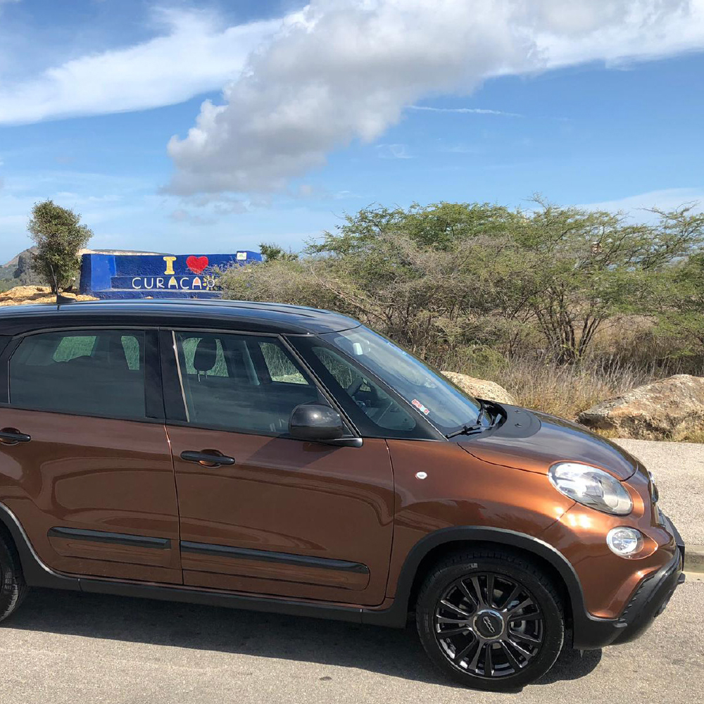 Fiat 500L brown - USD 60 p.d.*